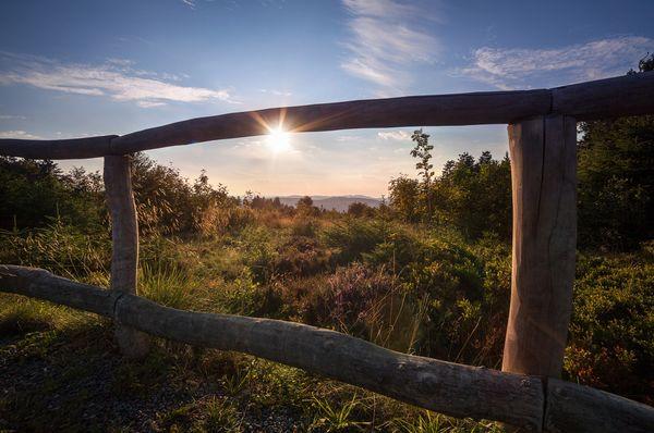 Ein Zaun steht im Vordergrund. Im Hintergrund steht die Sonne über einem Wald.